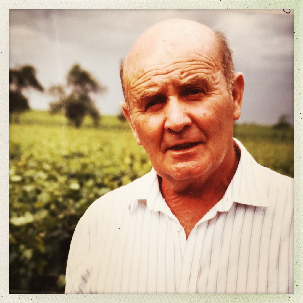 ©Baghera/wines – Courtesy of H.Jayer's family. Henri Jayer in the vineyard.